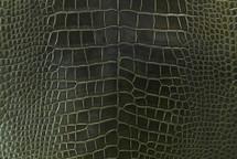 Alligator Skin Belly Millenium Olive 30/34 cm Grade 4
