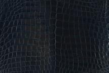 Nile Crocodile Skin Belly Glazed Midnight 30/34 cm Grade 4