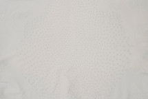 Ostrich Skin Garment Crust