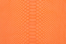 Python Skin Short BCBL Matte Orange