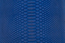 Python Skin Short BCBL Matte Cobalt
