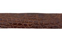Belt Strip Crocodile Flank Glazed Brown
