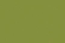 Leather Full Grain Lime
