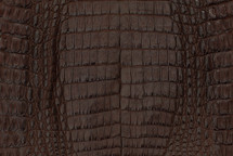 Caiman Skin Belly Matte Brown