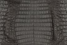 Caiman Skin Belly Matte Grey