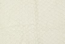 Arapaima Skin Matte Cream