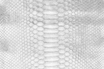 Python Skin Short Crisp Silver