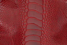 Ostrich Leg Glazed Flame Red