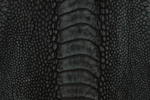 Ostrich Leg Stonewash Black