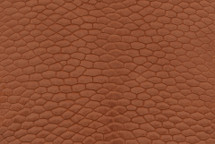 Beaver Tail Matte Cognac