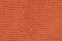 Beaver Tail Matte Orange