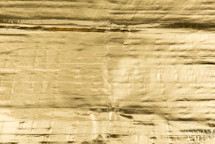 Eel Skin Panel Metallic Gold
