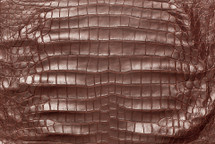 American Crocodile Skin Belly Matte Wine 50/54 cm Grade 4
