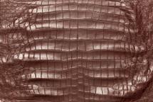 American Crocodile Skin Belly Matte Wine 55/59 cm Grade 3