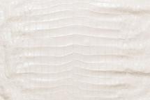 American Crocodile Skin Belly Matte White 55/59 cm Grade 3