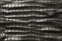 American Crocodile Skin Belly Matte Charcoal 55/59 cm Grade 4