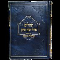 Tehilim Tehilos Menachem, 1 Vol