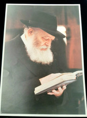 Photo of the Rebbe | Large | 24.5 x 34.5cm | 4