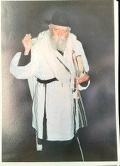 Photo of the Rebbe | Large | 24.5 x 34.5cm | 6