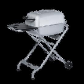 Silver PKTX Grill & Smoker Plus