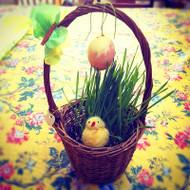 Spring Festivals E-Book