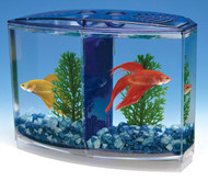 Penn Plax Twin Beta Bow-Front Kit for Aquarium