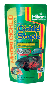 Hikari Cichlid Staple Floating Pellets for Pets Large 8.8-Ounce