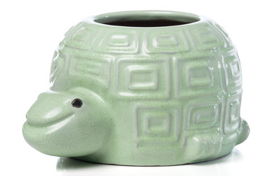 Alfresco Home Ceramic Happy Turtle
