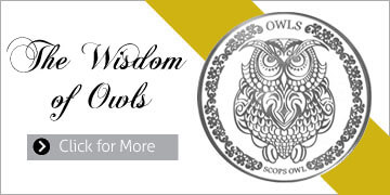 wisdom-of-owls-small2.jpg