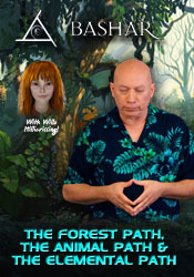 The Forest Path, The Animal Path and The Elemental Path - MP4 Video Download