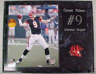 Carson Palmer Cincinnati Bengals 15x12 Plaque