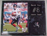 David Carr Houston Texans 15x12 Plaque