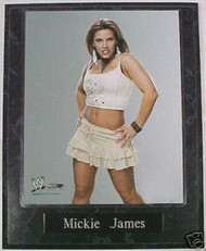 Mickie James Sexy WWE Wrestling Diva 10.5x13 Custom Wood Plaque