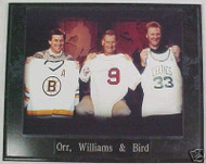 Bobby Orr, Ted Williams & Larry Bird Boston 10.5x13 Plaque
