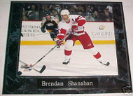 Brendan Shanahan Detroit Red Wings 10.5x13 Plaque - PLAQUE-0434