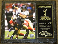 Ray Rice Baltimore Ravens Super Bowl XLVII 47 Champions 12x15 Plaque