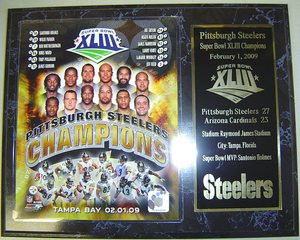 Pittsburgh 2009 City of Champions Plaque