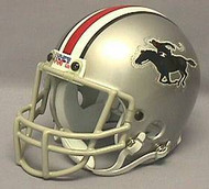 Tampa Bay Bandits USFL United States Football League Authentic Mini Helmet
