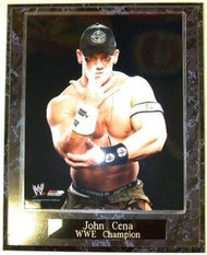 John Cena WWE Champion Wrestling 10.5x13 Plaque