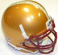 Boston College Eagles Alternate Schutt NCAA College Football Authentic Team Mini Helmet