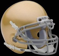 Notre Dame Fighting Irish Schutt NCAA College Football Authentic Team Mini Helmet