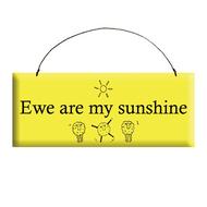 Ewe are my Sunshine Wooden Plaque