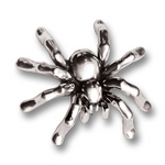 Spider Pin - Sterling Silver