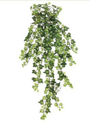 "IVY HANGING BUSH 29.5"" GR"