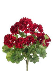 "GERANIUM BUSH 18"" RED"