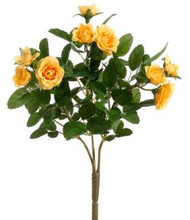 "MINI ROSE BUSH 10"" YELLOW"