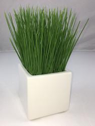 """GRASS IN CERAMIC VASE GR 9"""""""