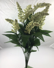 ASTILBE BUSHx14 CREAM/WHITE