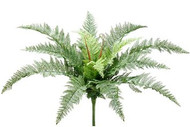 LEATHER FERN BUSH 21""