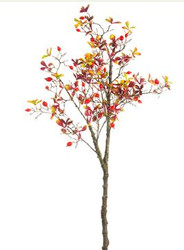 ROSE HIP SPRAY BRANCH FALL 33'